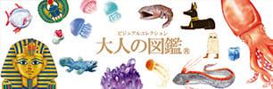 ビジュアルコレクション 大人の図鑑